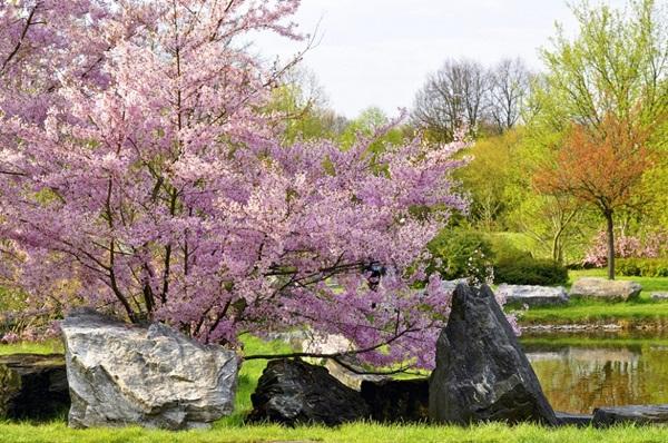 spring-photos-01 (16)