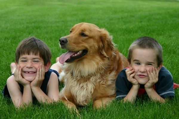 babies-with-dog- (7)