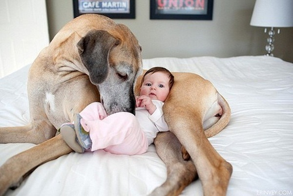 babies-with-dog- (8)