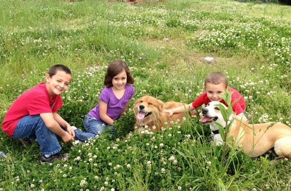 babies-with-dog- (9)