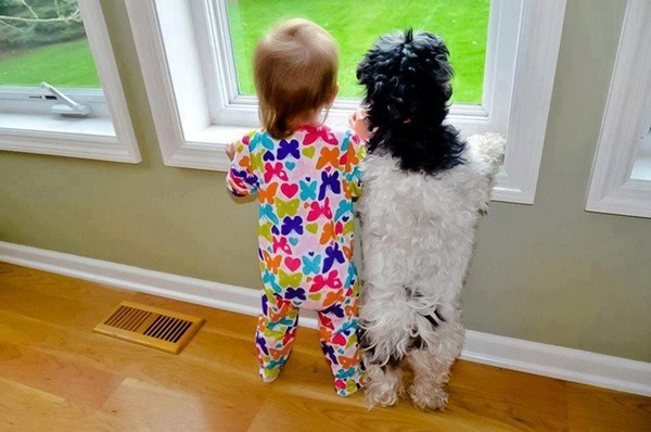 babies-with-dog- (12)