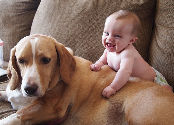 babies-with-dog- (15)
