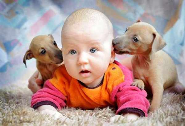 babies-with-dog- (17)