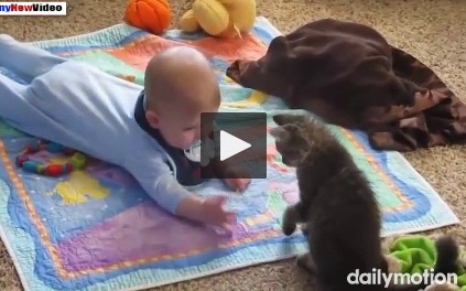 funny-videos-of-cats-and-babies-compilation-2015-